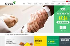 网站建设案例:湖南艾臣